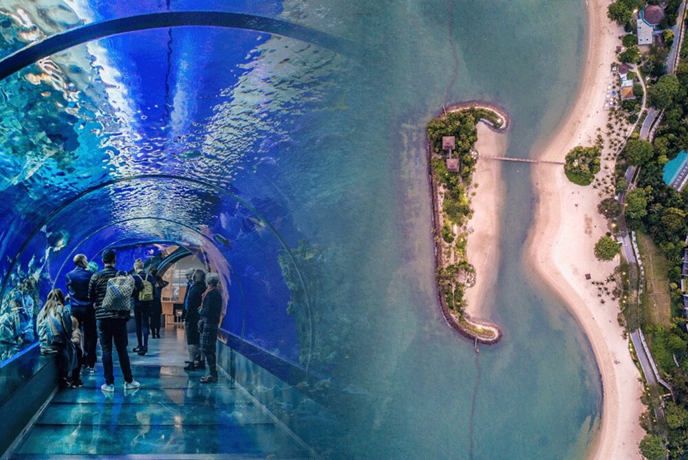 Đảo Sentosa – Thiên đường giải trí tại Singapore, nơi có Sea Aquarium