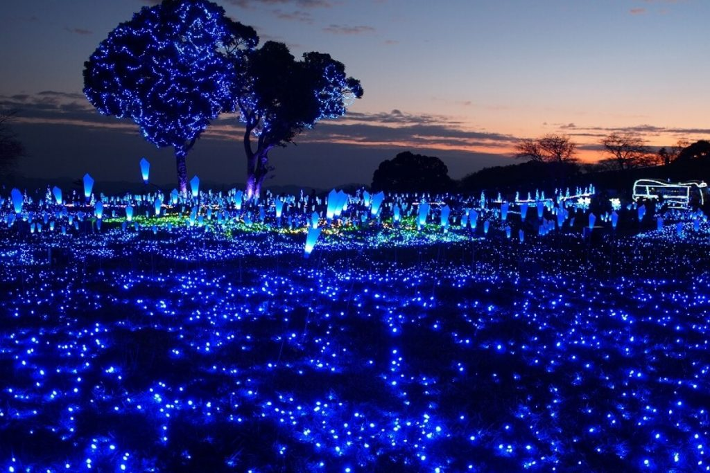 Hòa mình vào vẻ đẹp thiên nhiên tuyệt vời Nhật Bản tại Mother Farm, Chiba.