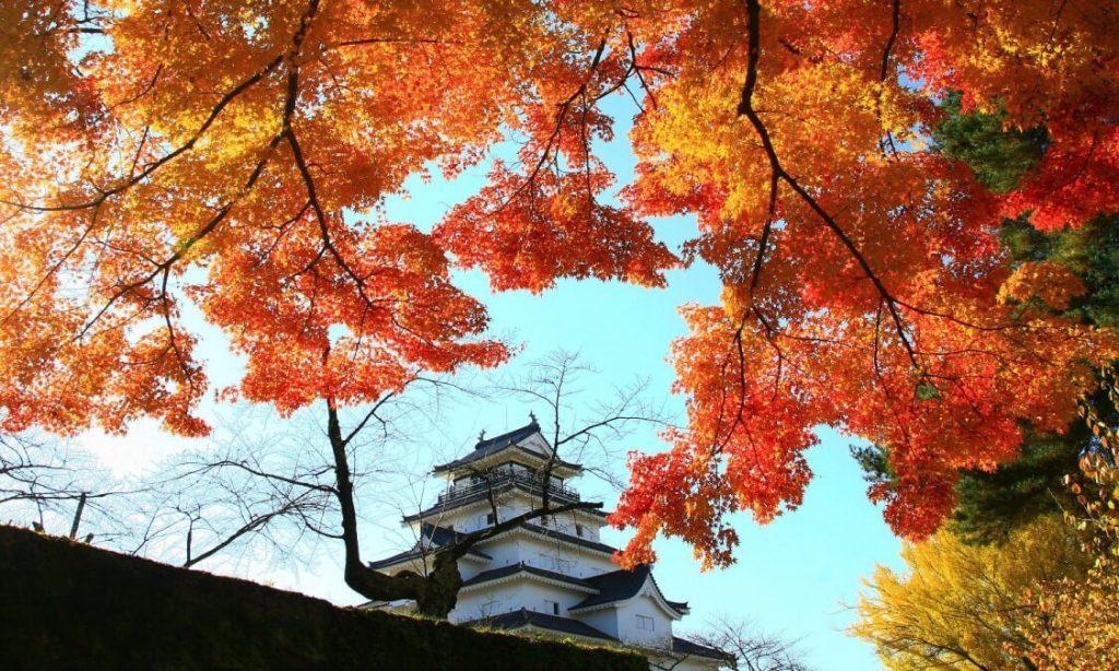 Thành Tsuruga với cảnh đẹp của lá phong