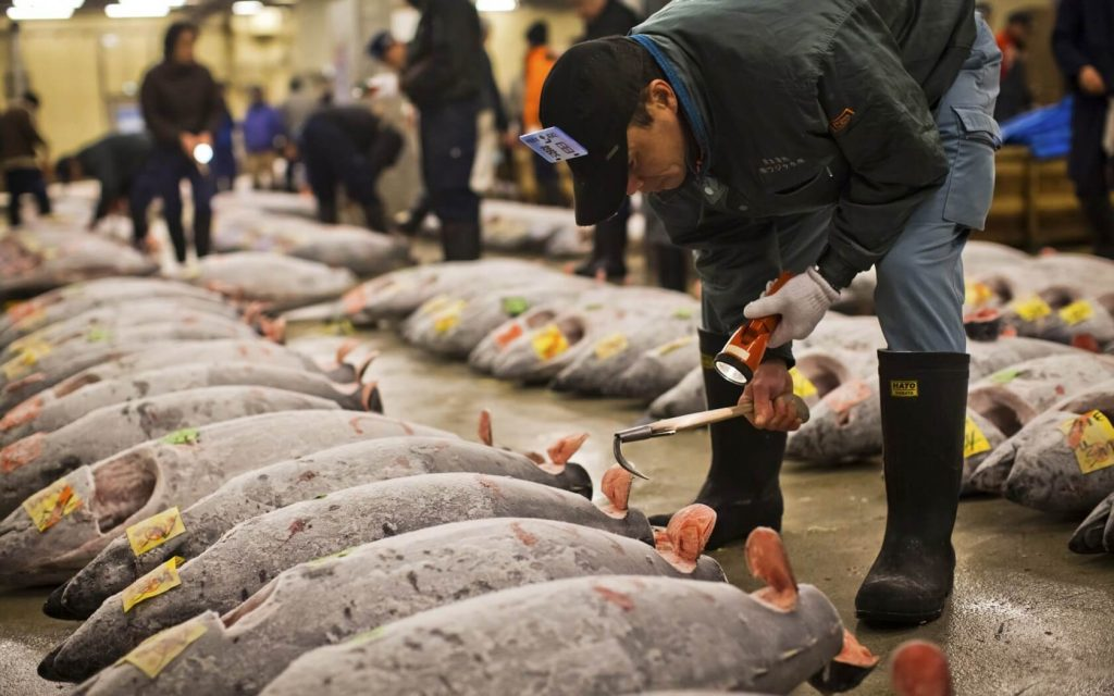 Đến chợ cá Tsukiji du khách sẽ được thưởng thức muôn ngàn những món ăn hấp dẫn từ hải sản tươi ngon