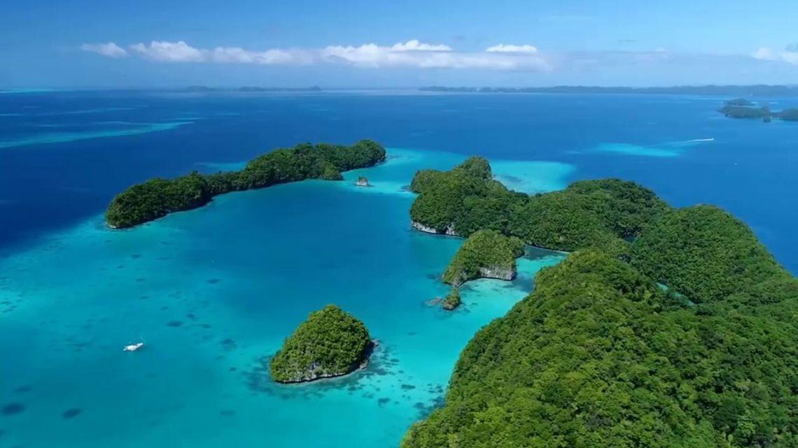 Du lịch Palau 2019: Bơi cùng hàng triệu con sứa quý hiếm